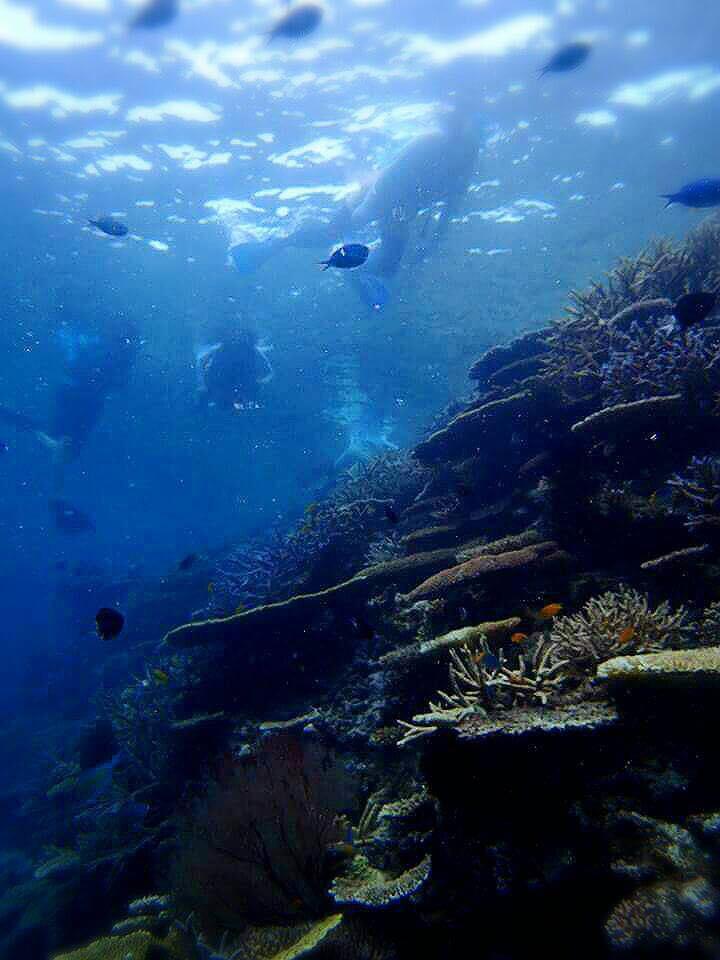 ブルーが眩しい宮古島の海