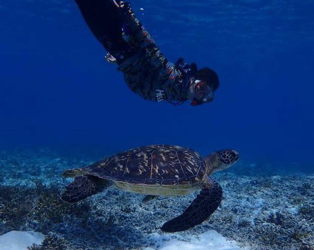 宮古島でウミガメに会いに行こう