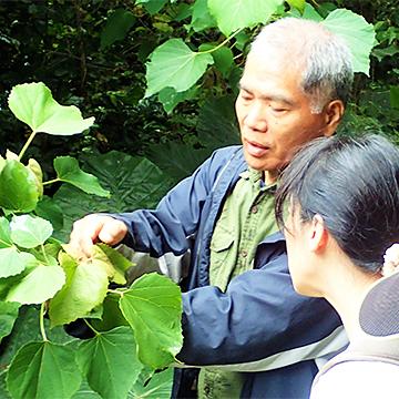 うぷきの森 早起き鳥さんぽ/亜熱帯の植物さんぽ/ナイトツアー